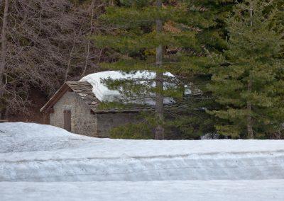 Disgelo di Marzo - Vivaio la Vezzosa - Parco dei Cento Laghi