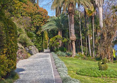 Giardini di Villa Carlotta - Lago di Como