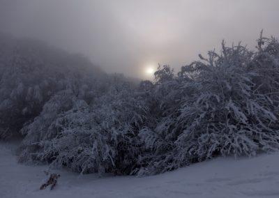 Libeccio invernale