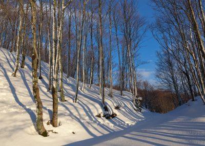 Luce Serale - Monte Borgognone