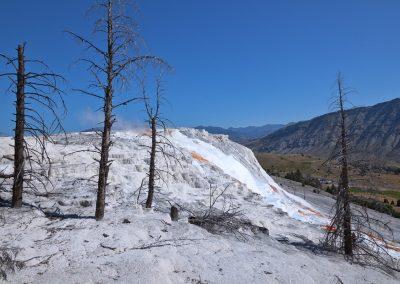 Mammoth Springs - Yellowstone National Park