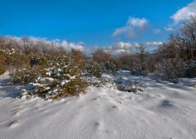 Neve fresca - Passo del Sillara
