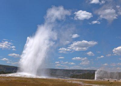 Old Faithful e Beehive Geysers - Upper Geyser Basin - Yellowstone National Park