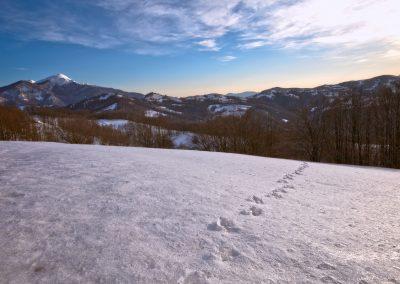 Orme - Sentiero Groppi Rossi-Monte Borognone