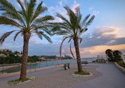 Palme - Lungomare di San Terenzo - La Spezia