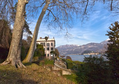 Platani - Villa Carlotta - Lago di Como