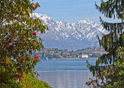 Scorcio sul Lago - Lago di Como