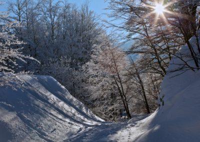 Sentiero panoramico del Lago Santo - Parco dei Cento Laghi
