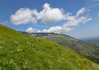 Sui Prati dei Monti Sibillini
