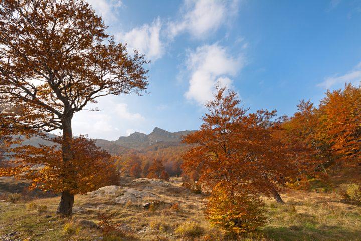 Autunno - Capanne di Badignana - Parco dei Cento Laghi