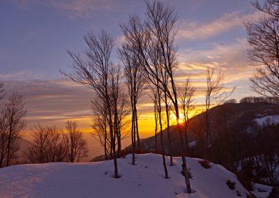 tramonto-tra-i-faggi