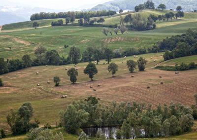 Colline Langhiranesi - Lavoro sui campi