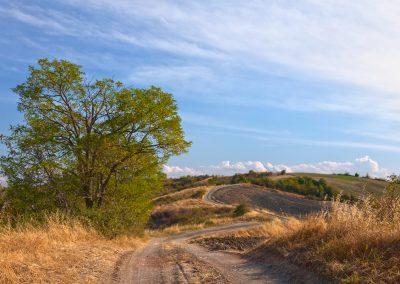 Sentieri tra i calanchi - Parco Barboj - Rivalta